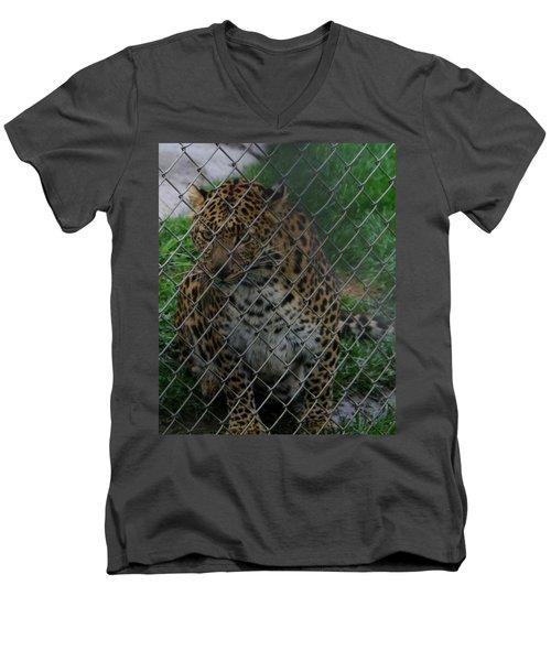 Christmas Leopard II Men's V-Neck T-Shirt