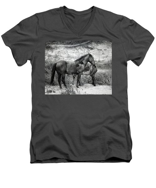 Circle Of Life Men's V-Neck T-Shirt
