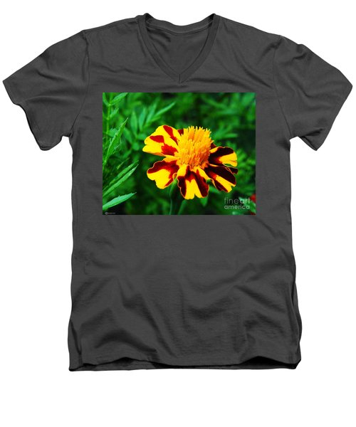 Circus Circus Marigold Men's V-Neck T-Shirt