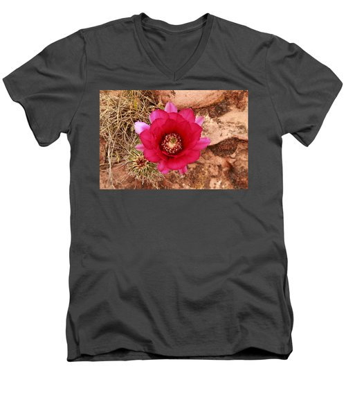 Men's V-Neck T-Shirt featuring the photograph Claret Cup Cactus On Red Rock In Sedona by Alan Vance Ley