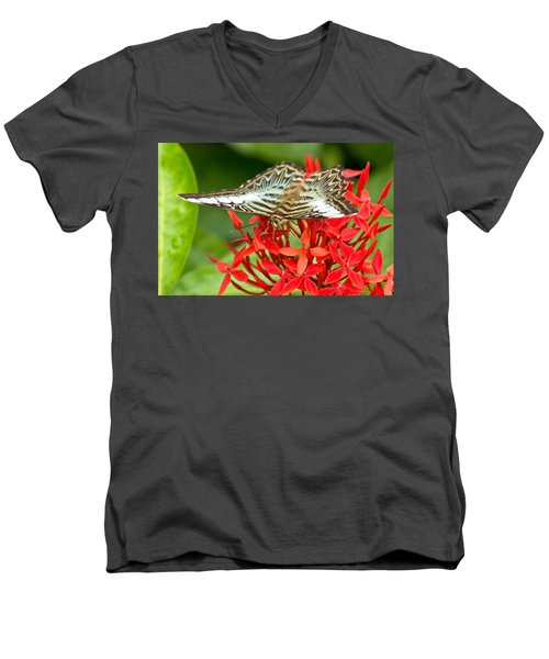 Clipper Butterfly Men's V-Neck T-Shirt