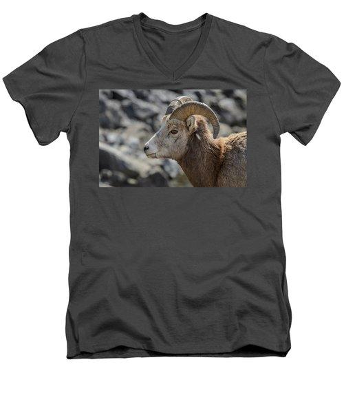 Close Big Horn Sheep  Men's V-Neck T-Shirt