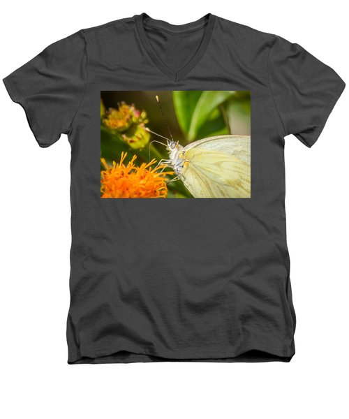 Butterfly Attracted To Mexican Flame Men's V-Neck T-Shirt by Debra Martz