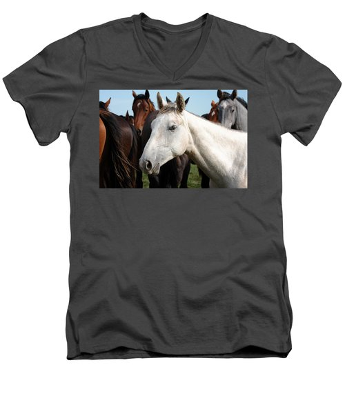 Close-up Herd Of Horses. Men's V-Neck T-Shirt