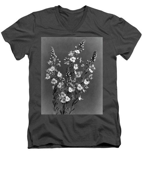 Close Up Of Gentian Speedwell Flowers Men's V-Neck T-Shirt