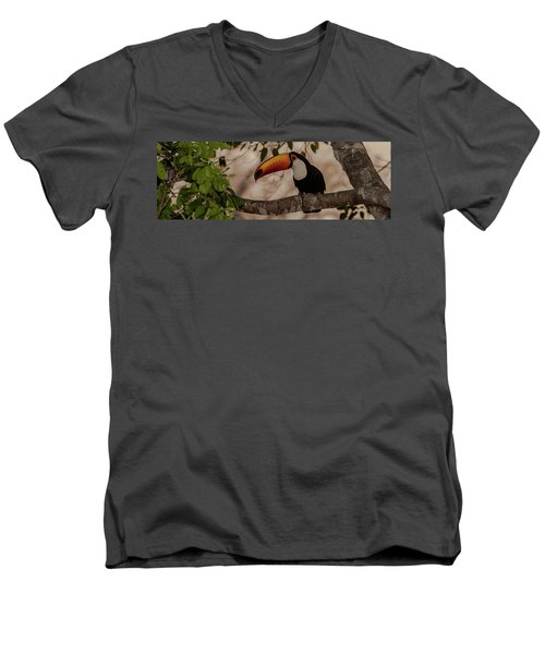 Close-up Of Tocu Toucan Ramphastos Toco Men's V-Neck T-Shirt by Panoramic Images