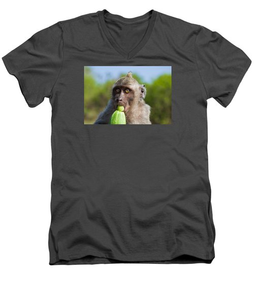 Closeup Monkey Eating Cucumber Men's V-Neck T-Shirt