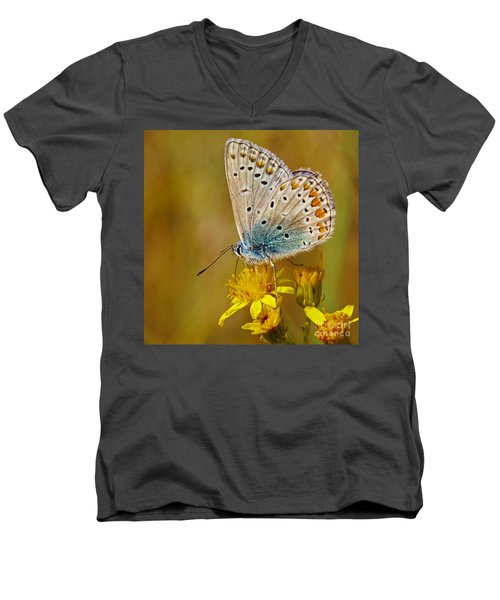 Closeup Of A Common Blue Butterfly Men's V-Neck T-Shirt