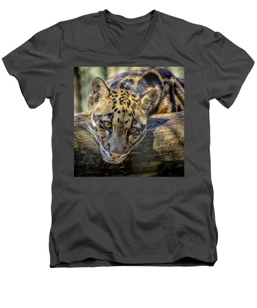 Men's V-Neck T-Shirt featuring the photograph Clouded Leopard by Steven Sparks