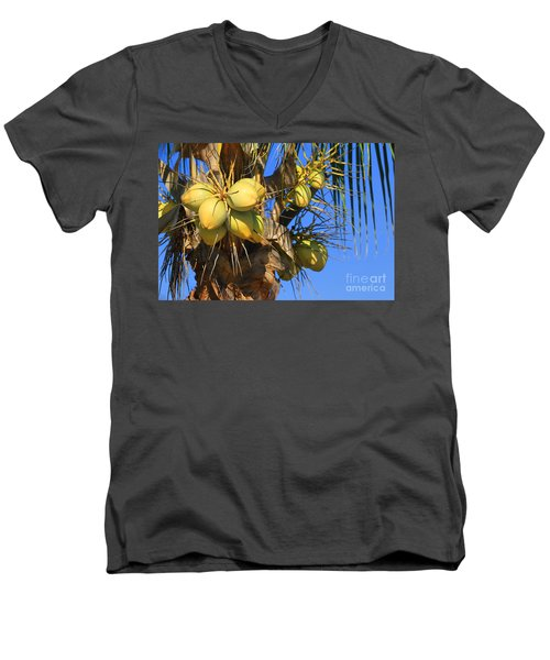 Men's V-Neck T-Shirt featuring the photograph Coconut 2 by Teresa Zieba