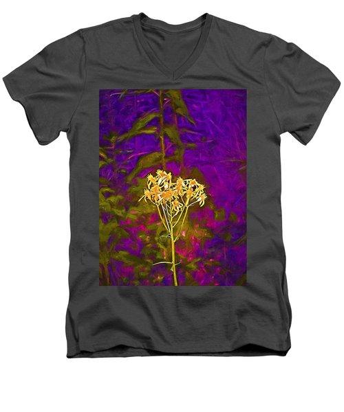 Color 5 Men's V-Neck T-Shirt by Pamela Cooper