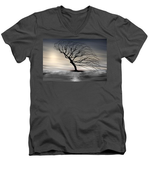 Color Of The Wind Men's V-Neck T-Shirt