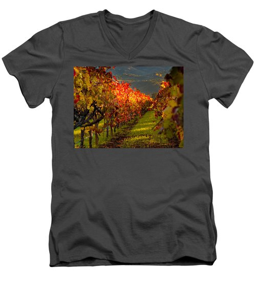 Color On The Vine Men's V-Neck T-Shirt by Bill Gallagher