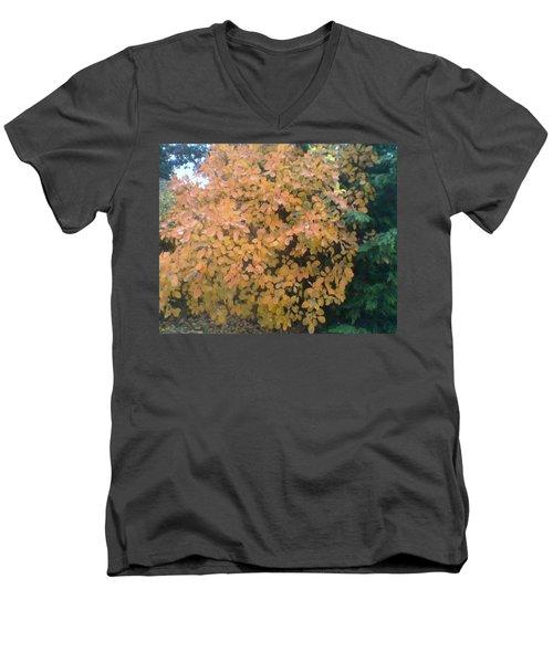 Color Surprise Men's V-Neck T-Shirt by David Trotter