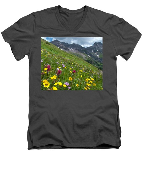 Colorado Wildflowers And Mountains Men's V-Neck T-Shirt