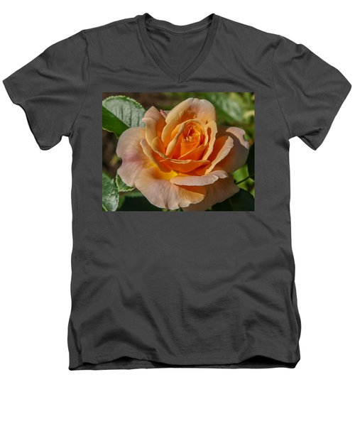 Colorful Rose Men's V-Neck T-Shirt