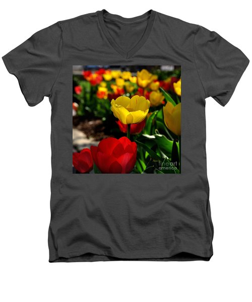 Colorful Spring Tulips Men's V-Neck T-Shirt by Nava Thompson
