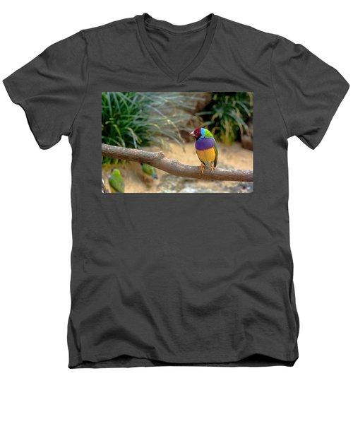 Colourful Bird Men's V-Neck T-Shirt by Daniel Precht