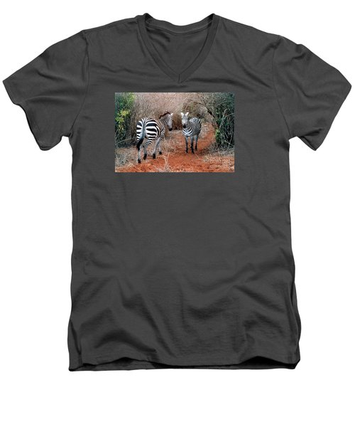 Coming And Going Men's V-Neck T-Shirt by Phyllis Kaltenbach