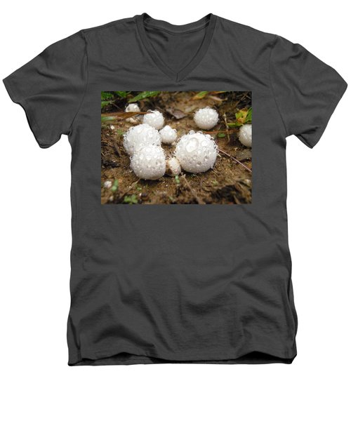 Common Puffball Dewdrop Harvest Men's V-Neck T-Shirt
