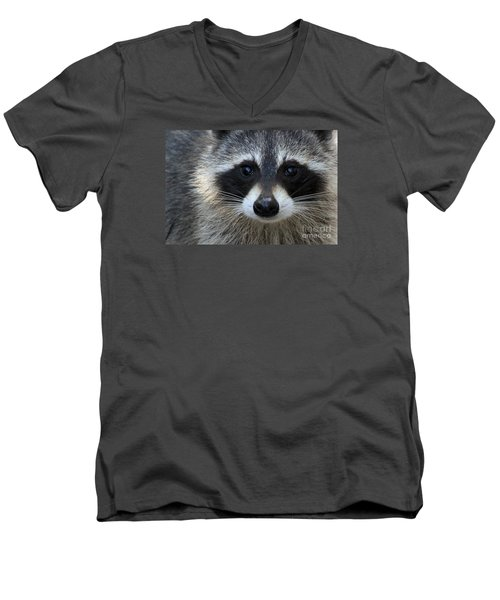 Common Raccoon Men's V-Neck T-Shirt