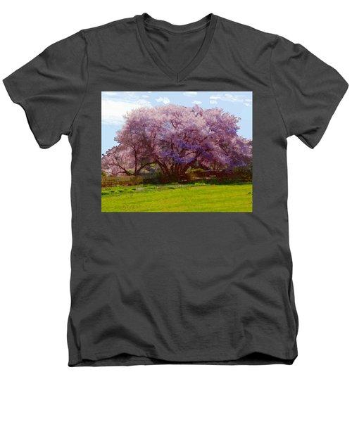 Concord Spring Men's V-Neck T-Shirt