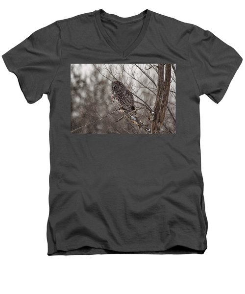 Contemplating Winter Men's V-Neck T-Shirt