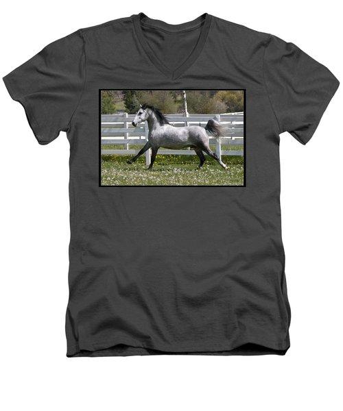 Conversano Catalina IIi Men's V-Neck T-Shirt by Wes and Dotty Weber
