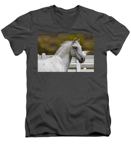 Conversano Mima Men's V-Neck T-Shirt by Wes and Dotty Weber