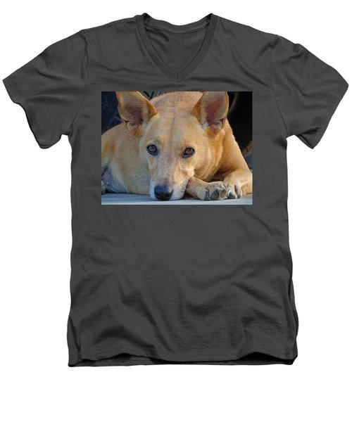 Cookie Chillin'  Men's V-Neck T-Shirt