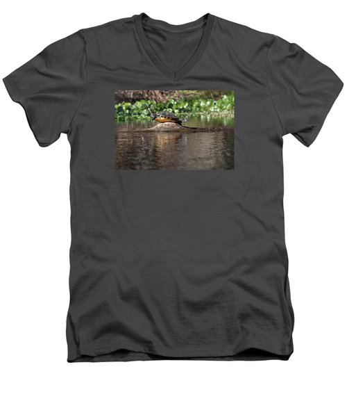 Men's V-Neck T-Shirt featuring the photograph Cooter On Alligator Log by Paul Rebmann