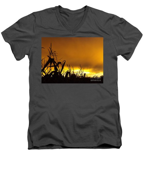 Corn At Sunset Men's V-Neck T-Shirt