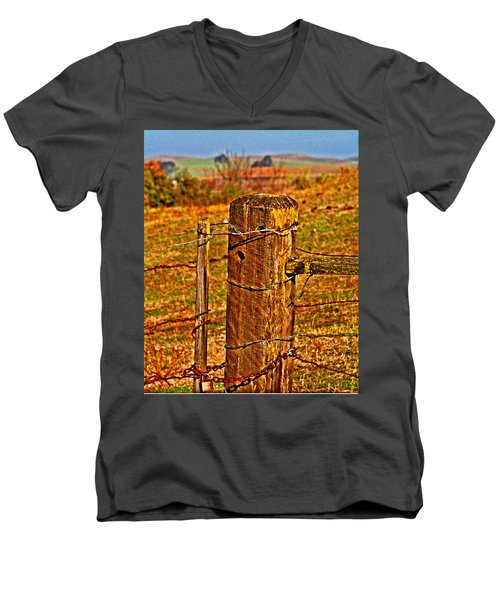 Corner Post At Gate Men's V-Neck T-Shirt