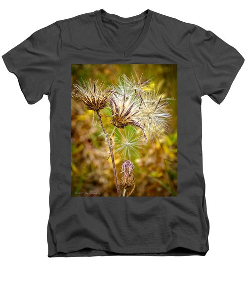 Men's V-Neck T-Shirt featuring the photograph Cotten Grass by Jim Thompson