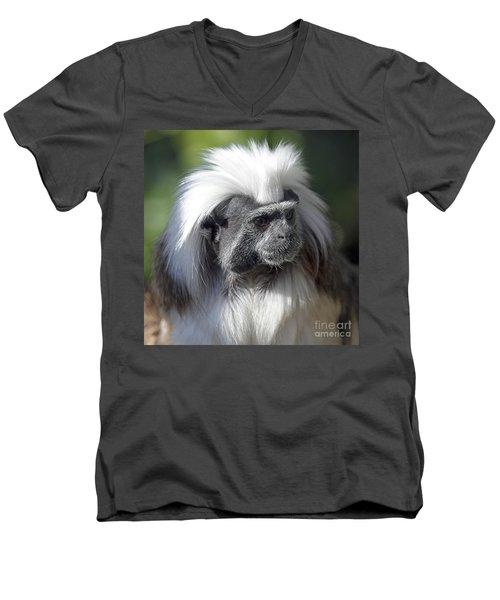 Cottontop Tamarin Saguinus Oedipus Men's V-Neck T-Shirt