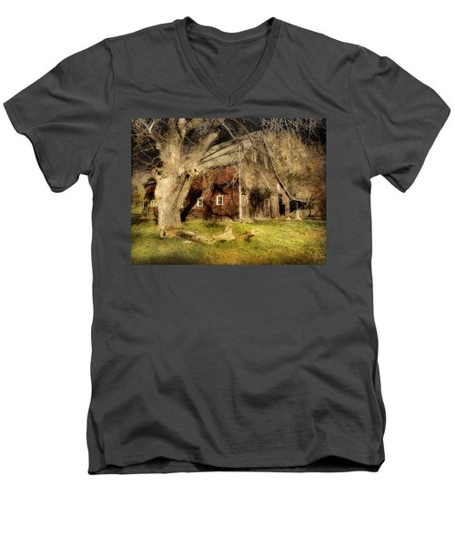 Country Afternoon Men's V-Neck T-Shirt