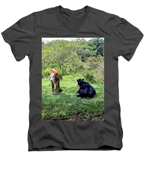 Men's V-Neck T-Shirt featuring the photograph Cow 4 by Dawn Eshelman