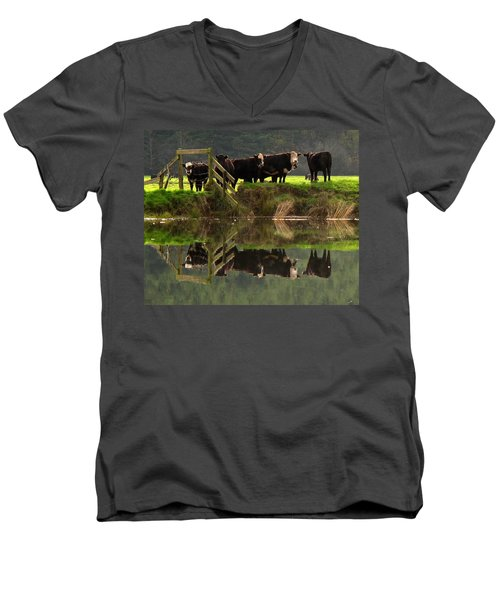 Cow Reflections Men's V-Neck T-Shirt