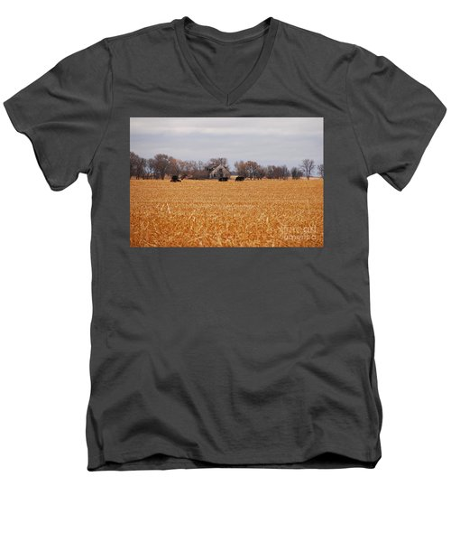 Men's V-Neck T-Shirt featuring the photograph Cows In The Corn by Mary Carol Story