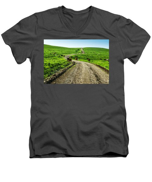Cows On The Road Men's V-Neck T-Shirt