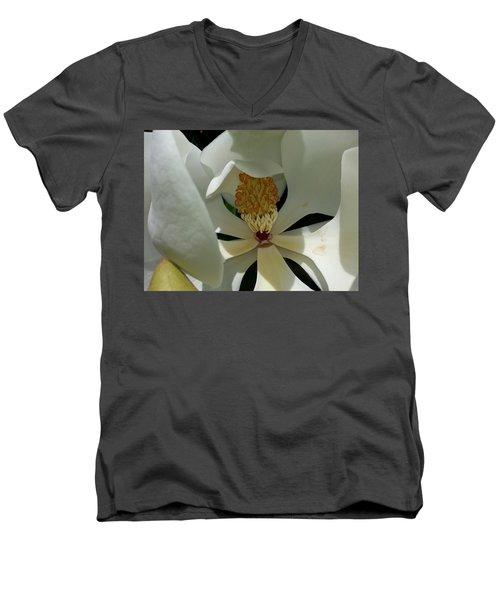 Coy Magnolia Men's V-Neck T-Shirt
