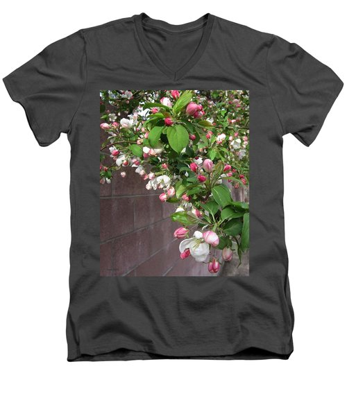 Crabapple Blossoms And Wall Men's V-Neck T-Shirt by Donald S Hall
