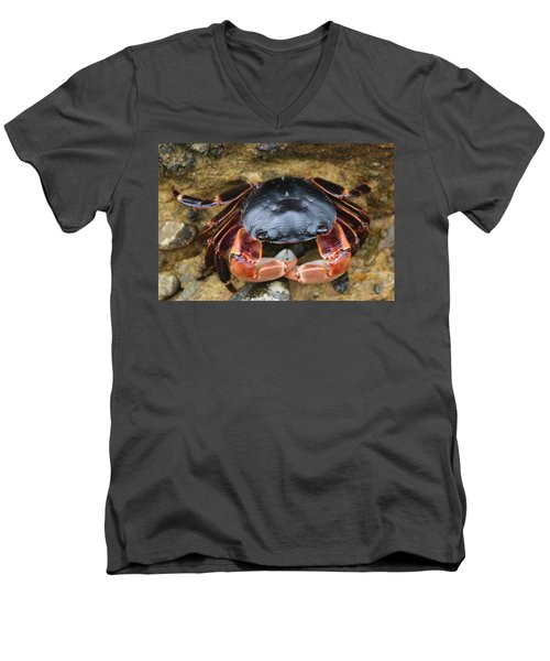Crabby Pants  Men's V-Neck T-Shirt