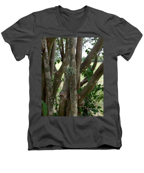 Crape Myrtle Growth Ball Men's V-Neck T-Shirt by Peter Piatt