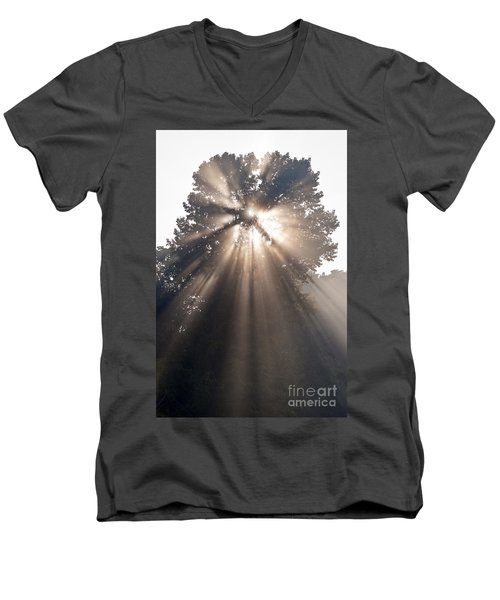 Crepuscular Rays Coming Through Tree In Fog At Sunrise Men's V-Neck T-Shirt