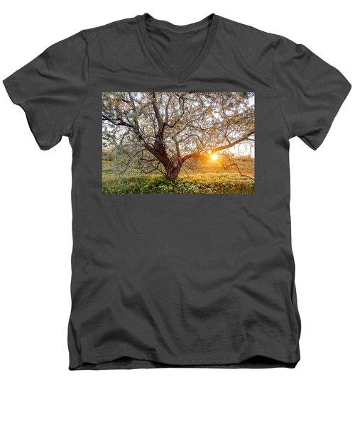 Crooked Men's V-Neck T-Shirt
