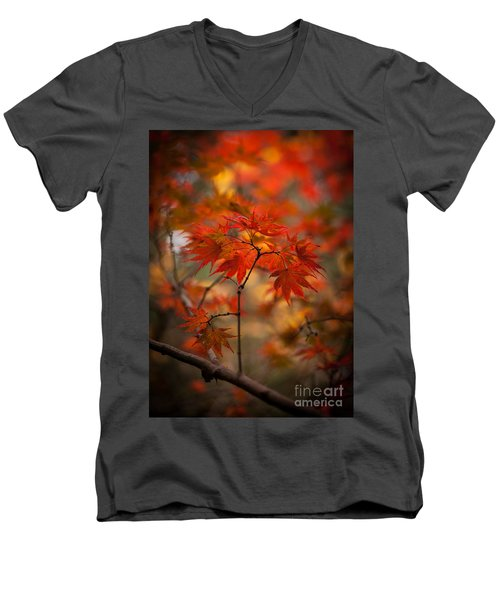 Crown Of Fire Men's V-Neck T-Shirt by Mike Reid