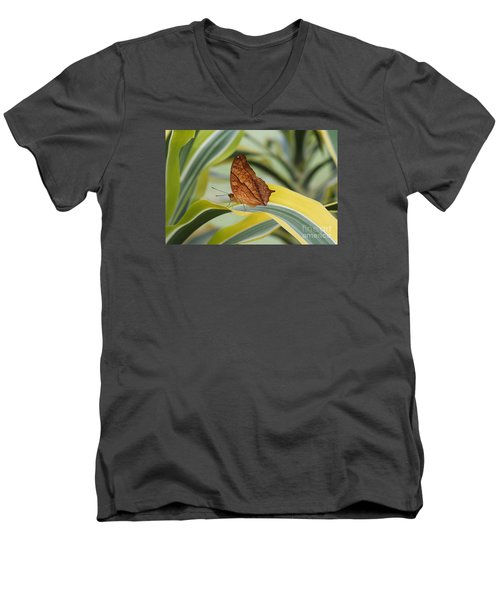Cruiser Butterfly Men's V-Neck T-Shirt