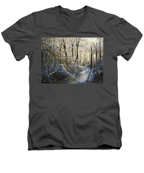 Crystal Path Men's V-Neck T-Shirt