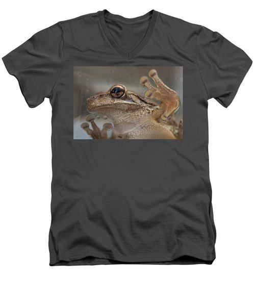 Cuban Treefrog Men's V-Neck T-Shirt by Paul Rebmann